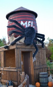 En af de større edderkopper i Djurs Sommerland - denne er i Bondegårdsland.