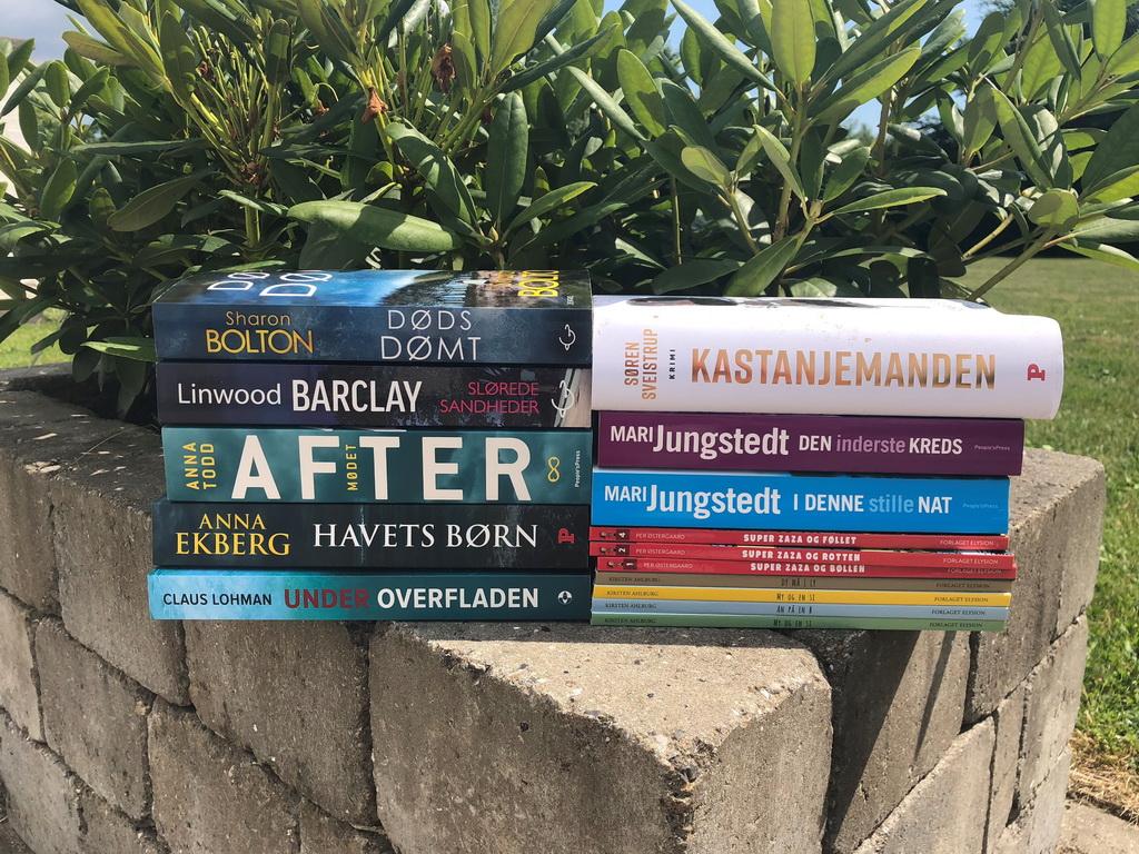 Bøger læst i juni 2018
