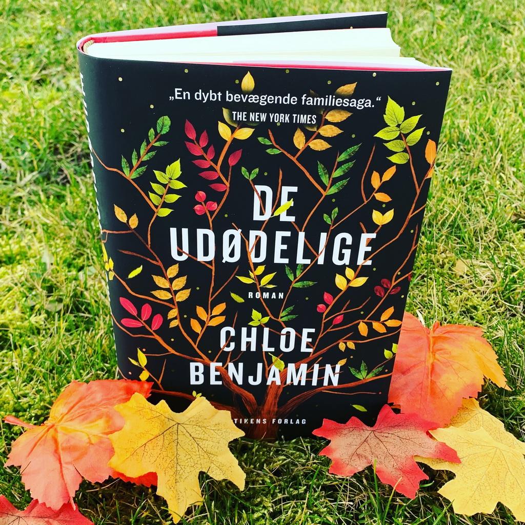 De udødelige af Chloe Benjamin