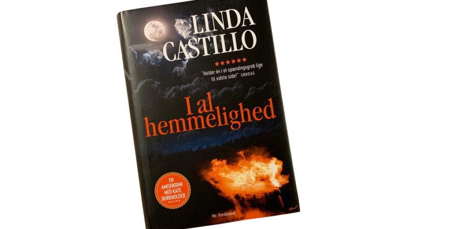 I al hemmelighed af Linda Castillo