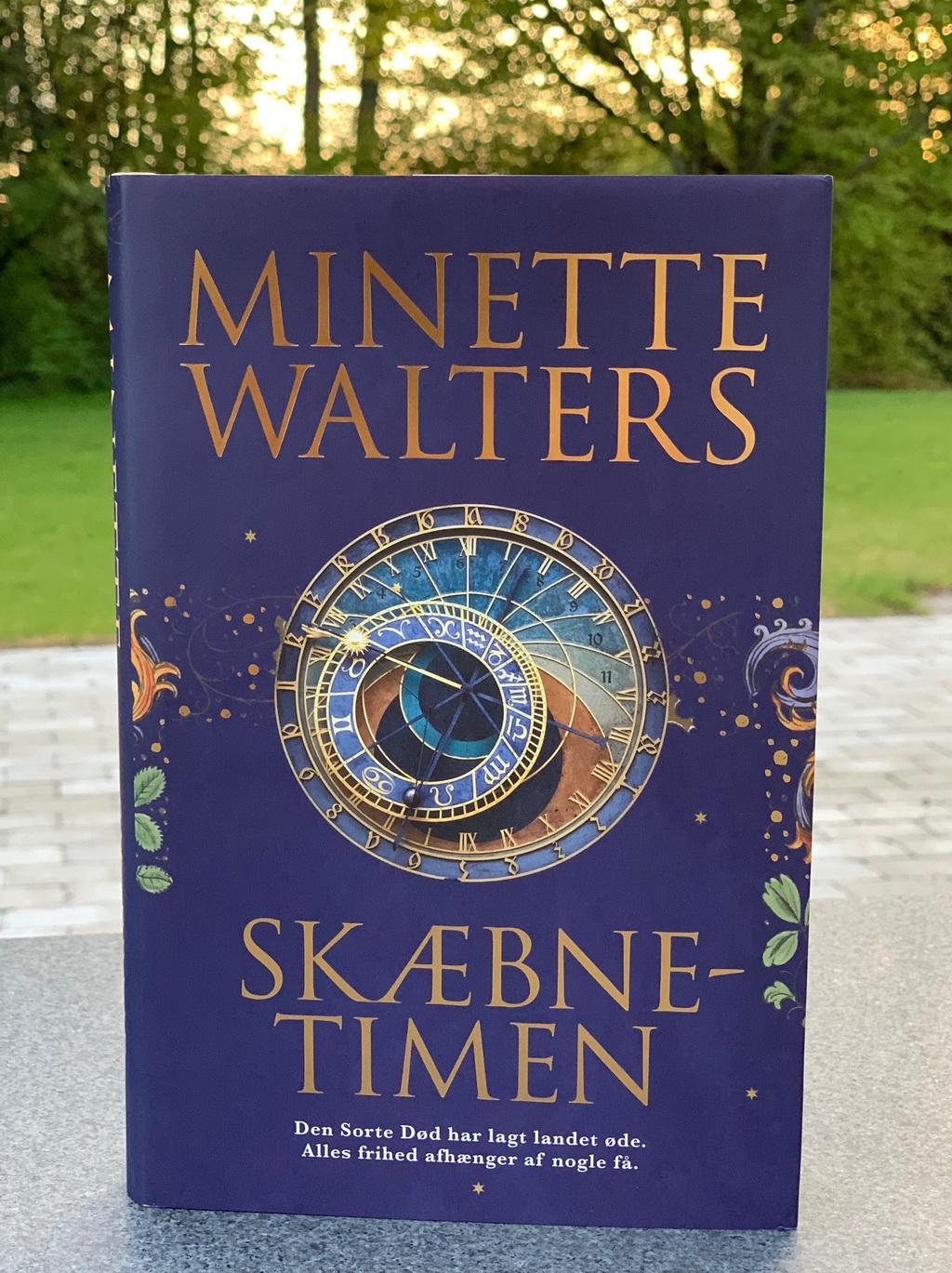 Skæbnetimen af Minette Walters