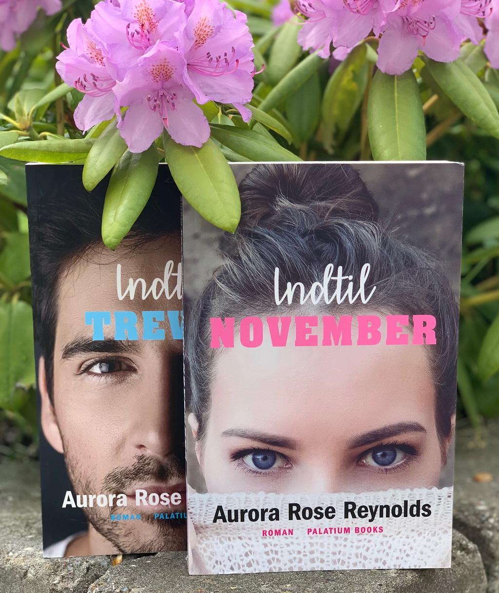 Indtil November af Aurora Rose Reynolds