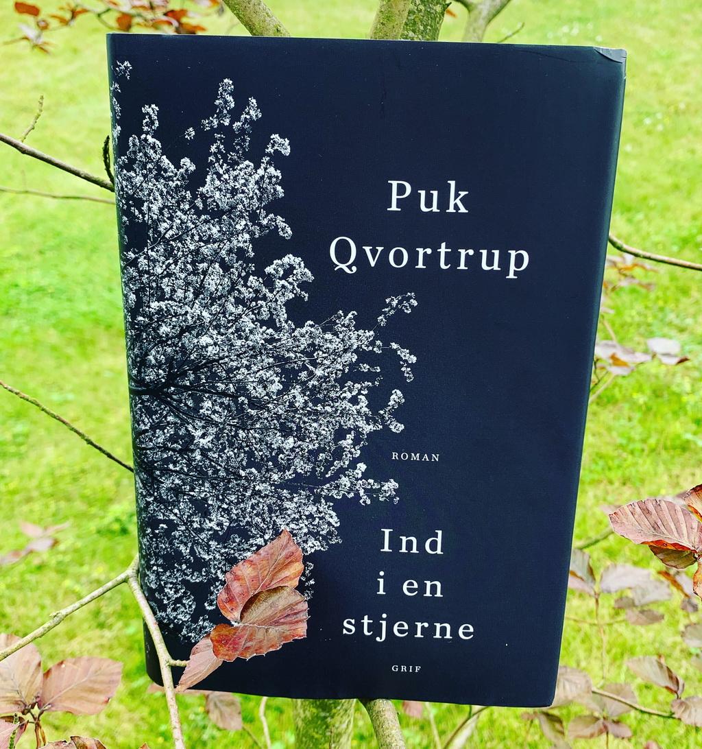Billede af: Ind i en stjerne af Puk Qvortrup