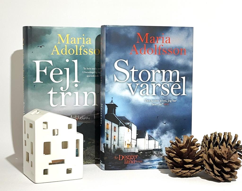 Billede af: Fejltrin og Stormvarsel af Maria Adolfsson